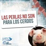 las perlas no son para los cerdos